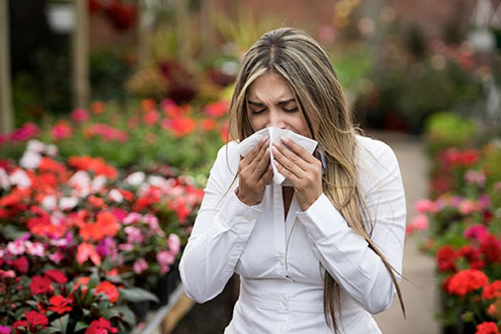 Allergy Relief Do's and Don'ts