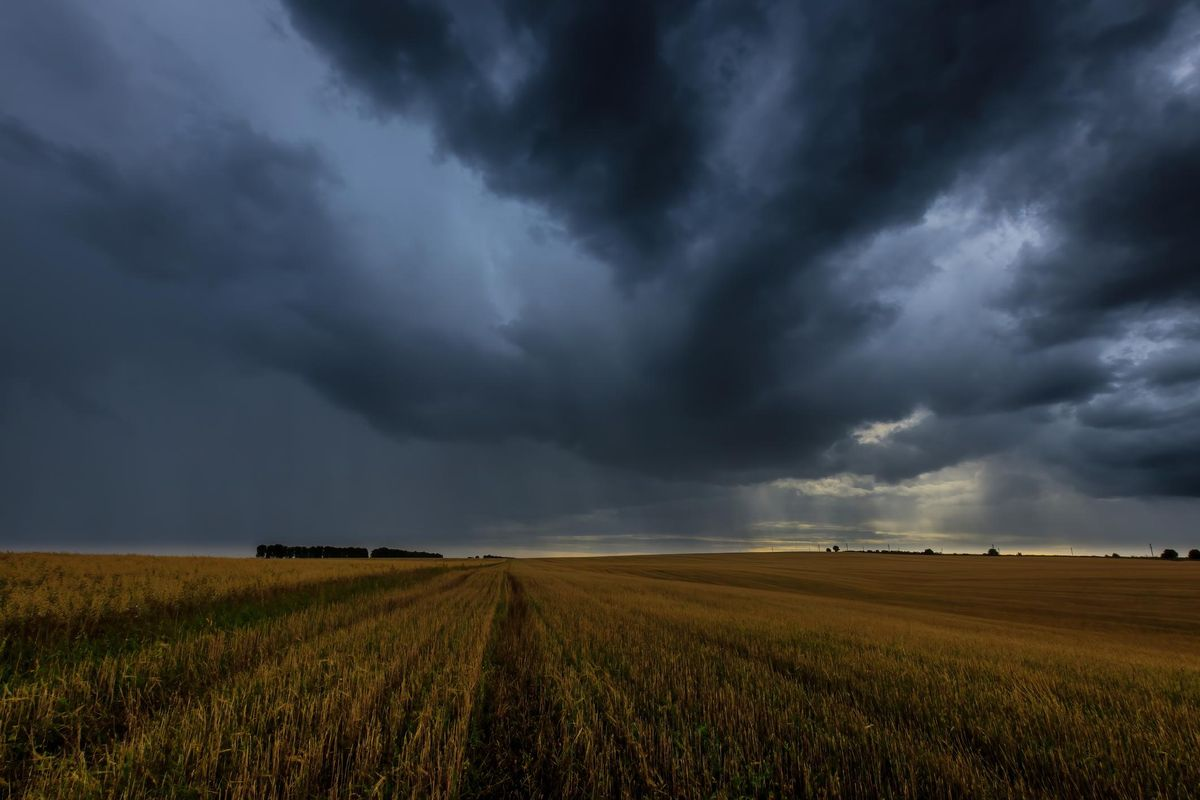Dark storm clouds in an agricultural field in autumn