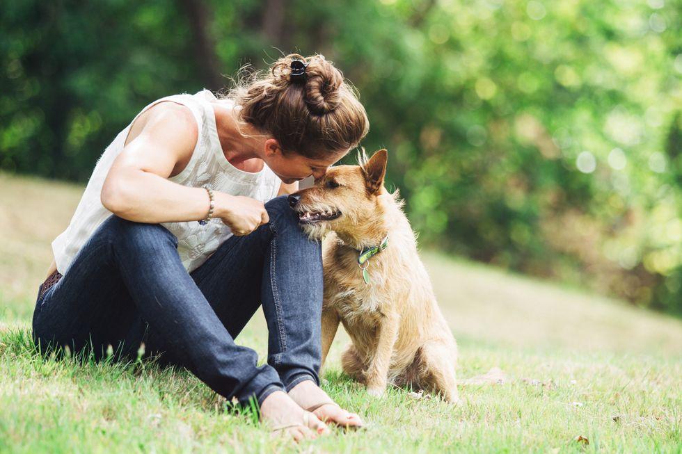 Skin Cancer Cream Linked to 5 Dog Deaths