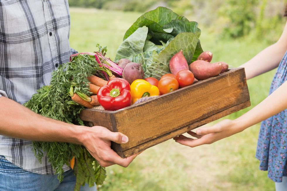 How to Join a CSA Farm Share