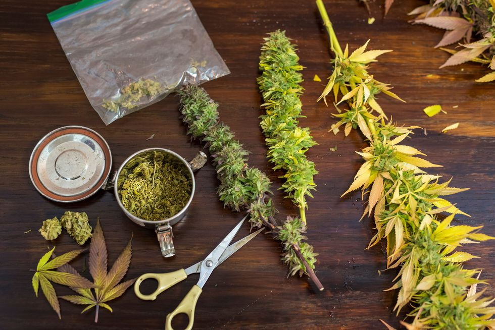 Is Pot Linked to Blood Pressure Deaths?