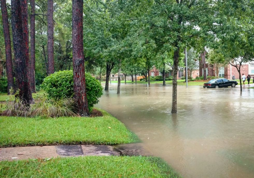 Harvey's Floodwaters Harbor Many Health Hazards