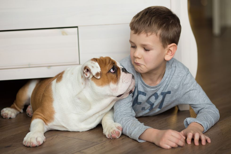 Can Dogs May Chase Away Eczema and Asthma?