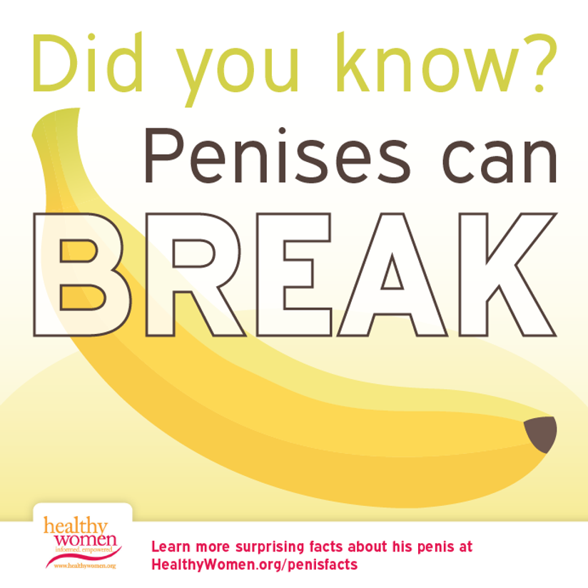 What makes a penis erect
