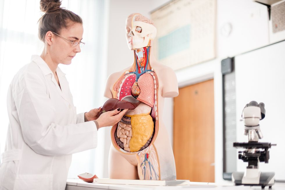 Liver Cancer Risks That May Surprise You