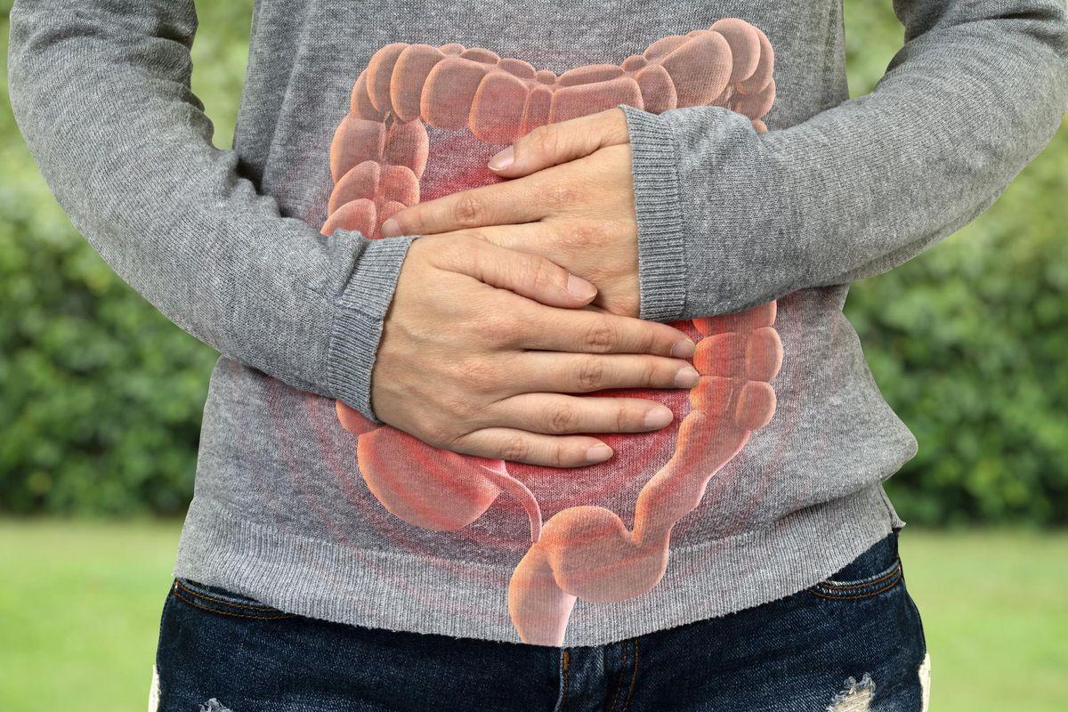 Large Intestine