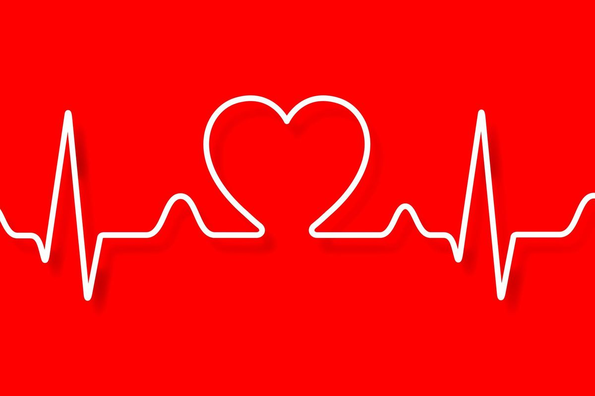 Vector electrocardiogram and heart pattern