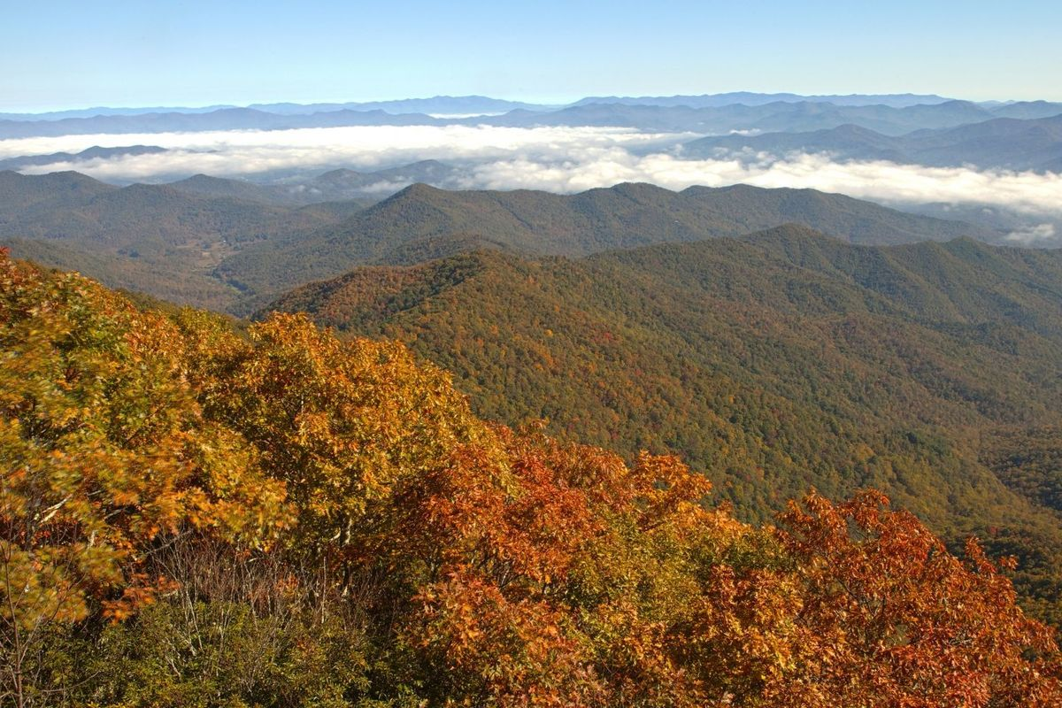 I'm Hiking the Appalachian Trail From Home. Here's How You Can, Too.