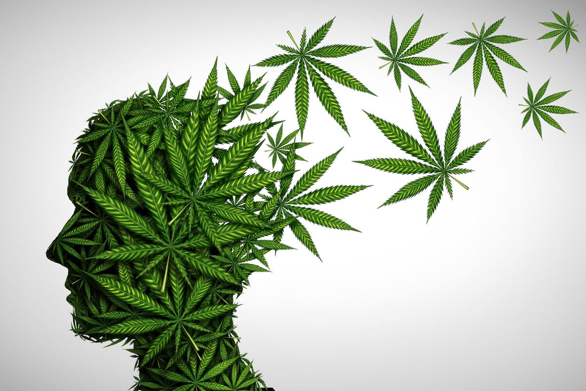 Marijuana effects on the brain and cannabis mood altering chemicals or psychology and drugs concept in a 3D illustration style.