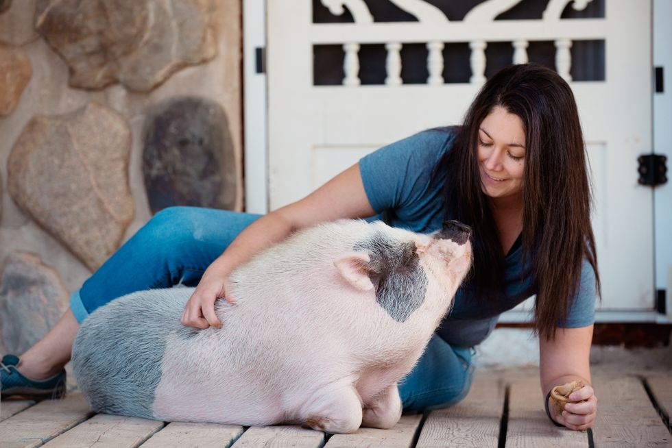 What's the Deal With Emotional-Support Animals